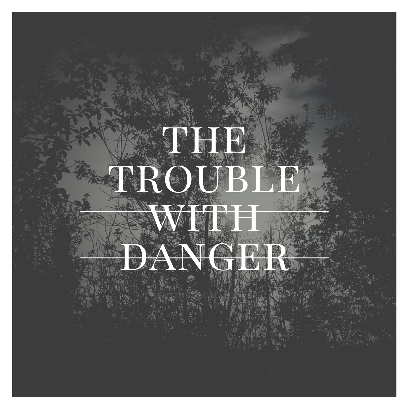 THE TROUBLE WITH DANGER2